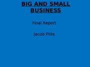 BIG AND SMALL BUSINESS