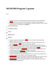 MGMT499 Program Capstone