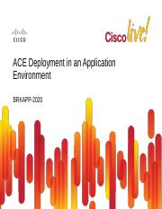 ACE Deployment in an Application Environment.pdf