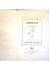 The Vintage Book of Amnesia Excerpt II