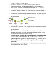 Lecture 6-7 - enzyme catalysis