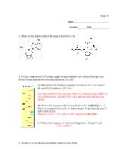 Quiz+5