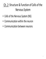 8-29-13+Cells+of+the+NS+a.pdf