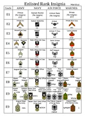 US_Military_Rank_All_Forces