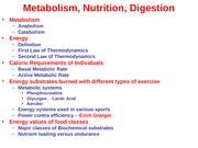 Metabolism_Nutrition_Digestion11