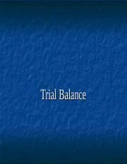 trial balance and subsidiary books (5).ppt
