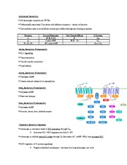 Pharmacology II Exam 1 Review Part 8