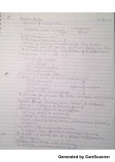 Nucleic Acids and Enzymes Lecture Notes