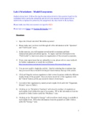 ModelEcosystemsWorkSheet_AK - Lab#4 Model Ecosystems Worksheet ...