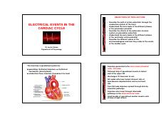 CV physiology lecture 3 2016 students [Compatibility Mode].pdf