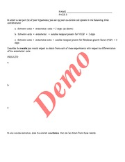 bis_104_sample_exam_key_07 - Page 3