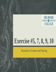 Exercises 5-10.ppt