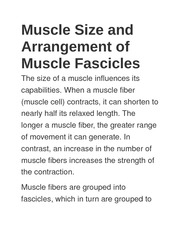 Muscle Size and Arrangement of Muscle Fascicles