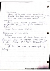 Prevention and Antioxidants Class Notes