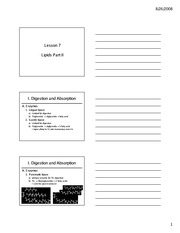 Lesson+7+Lecture+(Printable)