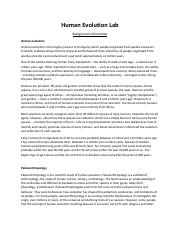 Cheap letter proofreading site for phd