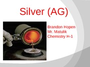 silver project1