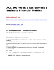 ACC 303 Week 8 Assignment 1  Business Financial Metrics.doc