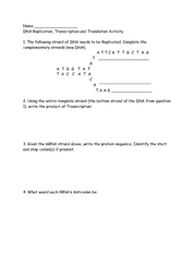 Printables Dna Replication Worksheet dna replication worksheet 1000 ideas about synthesis on transcription and translation lzk gallery