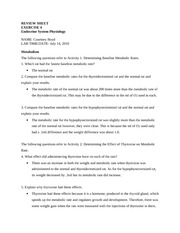reviewsheet_ap04