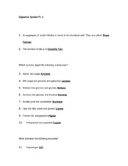 Anatomy & Physiology II Digestive System Part 2 Practice Questions