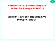L28_L29+Electron+transport+and+ox_phos+BCH4024+Fall+2012+_2_