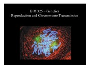 3-4- Reproduction and Chromosome Transmission 4th Lecture Version.ppt