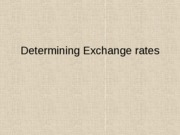3 Determining the Exchange rate