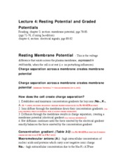 lecture_notes_04_(ta)