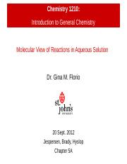 Chapter 5A - Molecular View of Reactions in Aqueous Solutions