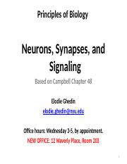 Lecture 9-Neurons_Synapses_Signaling-Ghedin