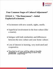 Cultural-Adjustment