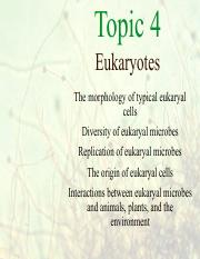 Topic 4 Eukaryotes_for_students.pdf