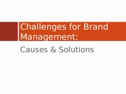 3 - Challenges for BMs COPY - Developing & Managing Brands SPRING 2013