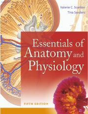 Essentials of Anatomy and Physiology.pdf