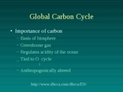 11. Carbon Cycle
