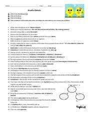 snurfle meiosis and genetics .docx - Snurfle Meiosis Name ...