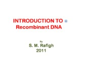 Microsoft PowerPoint - INTRODUCTION TO Recombinant DNA