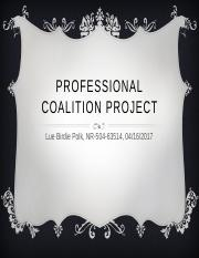 ProfessionalCoalitionProject.pptx