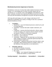 Bichemical principles- chapter 6 outline
