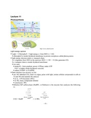 lecture_11_notes