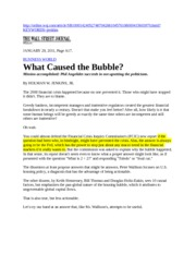 20110129-WSJ-What Caused the Bubble