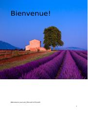 Bienvenue French 1-1 Guidebook 1