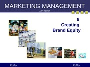 Chapter 8 Creating Brand Equity (Summer 2013)