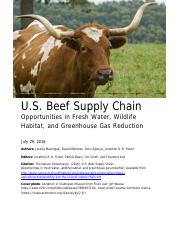 us-beef-supply-chain-report.pdf