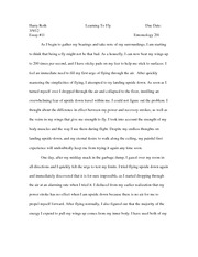 entomology essay 3