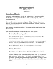 Appellate Brief Instructions and Timeline