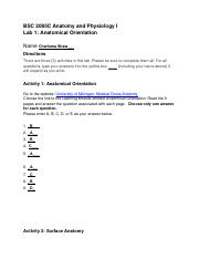 Lab_01_AnatomicalOrientation_revised (1)