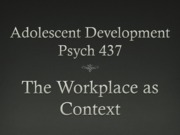 13 Workplace context