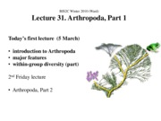 Ward_Lect31A_Arthropoda 1_ppt